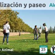 Socialización Canina en Alcorcón - Madrid