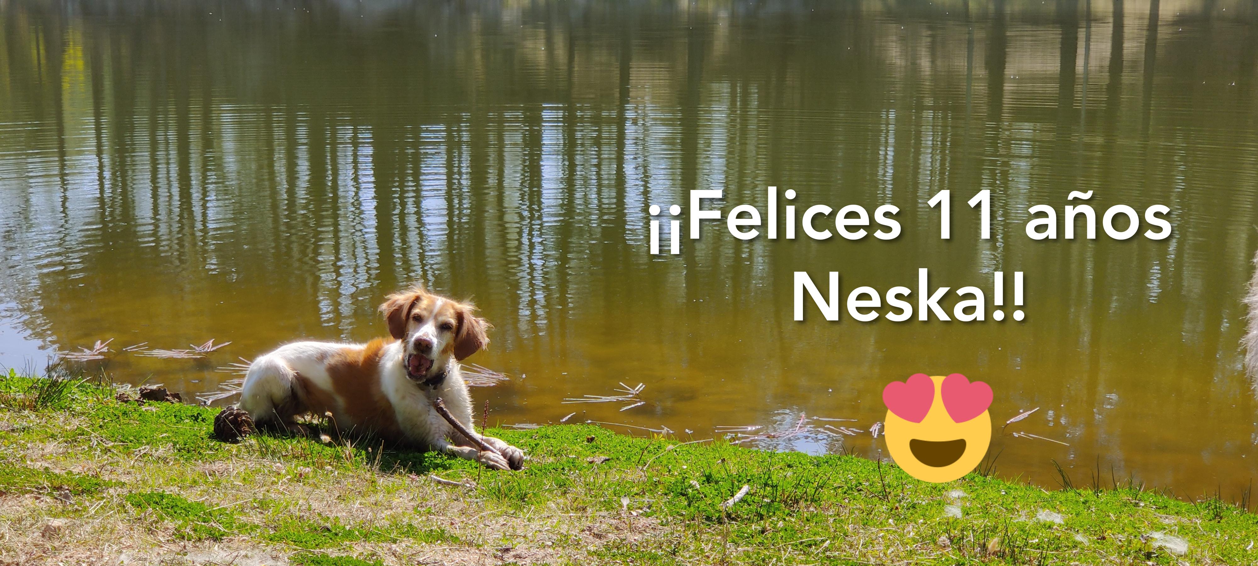 ¡¡Felices 11 años, Neska!!