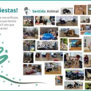 Felices Fiestas 2020-21