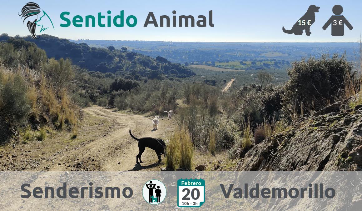 Senderismo con perros – febrero 2021