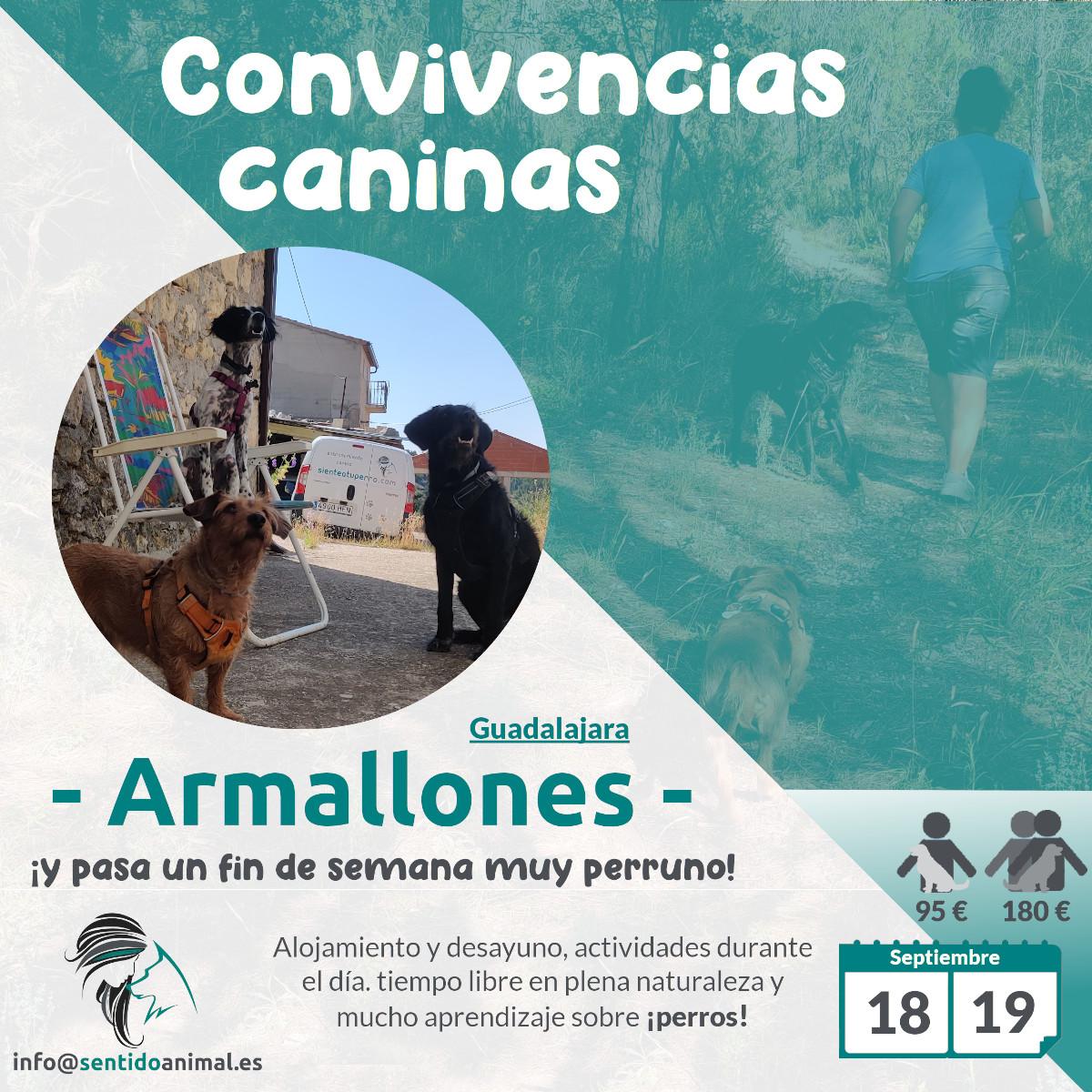 2021-09-18y19_Convivencias -caninas_Armallones