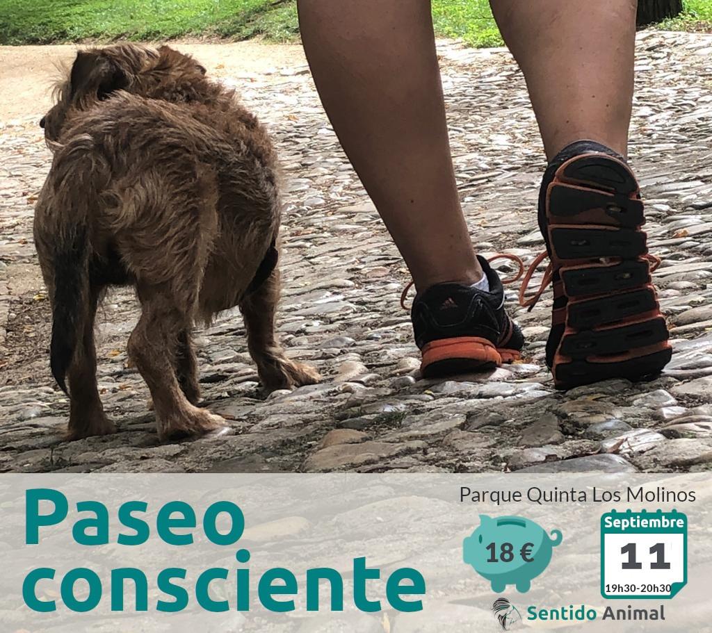 Paseo_consciente con perros - septiembre 2021