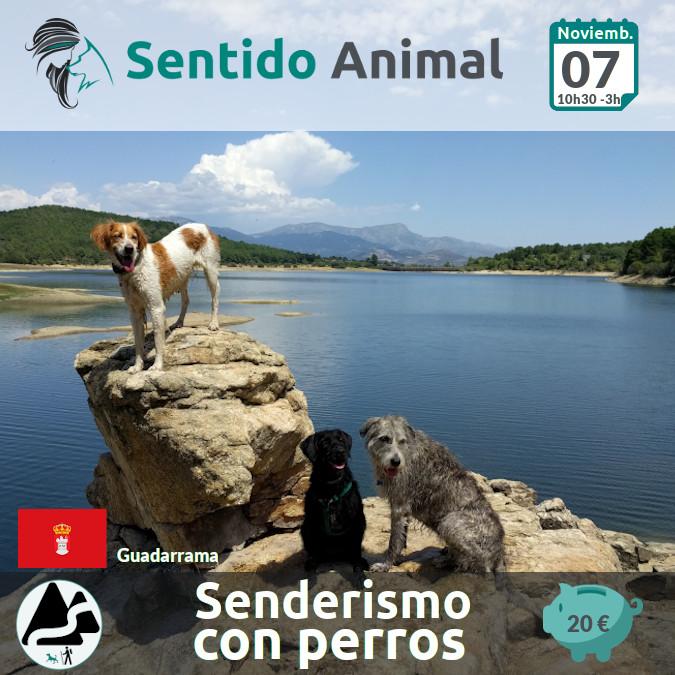 Senderismo_La Jarosa - Noviembre 2021