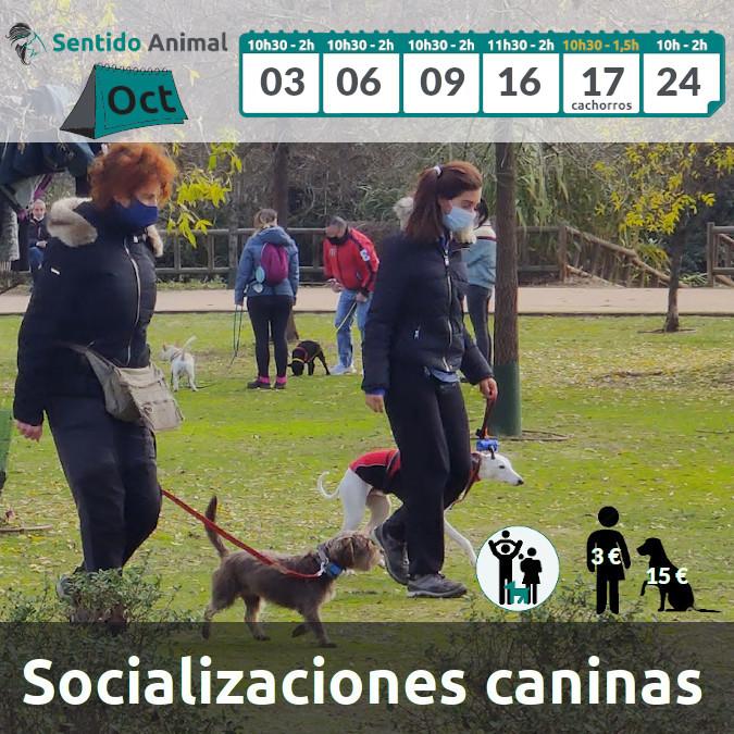 2021-22_Socialización_Oct21