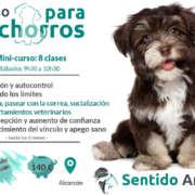 Clase para Cachorros_Educación canina