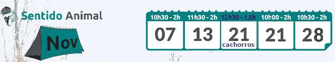 Calendario socialización canina noviembre